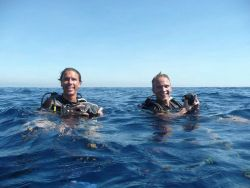 happy-divers-in-sea